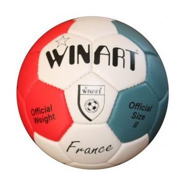 Minge handbal France II