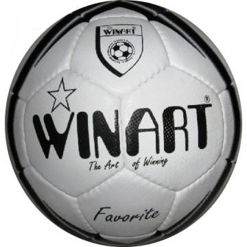 Minge fotbal Favorite Winart