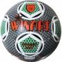 Minge fotbal Street Rex Winart